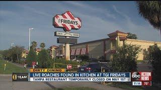 Dirty Dining: TGI Fridays