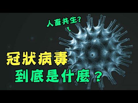 冠狀病毒到底是什麼?武漢肺炎為何這麼難以抵擋?