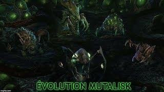 [StarCraft II] Heart of the Swarm: Abathur Évolution Mutalisk