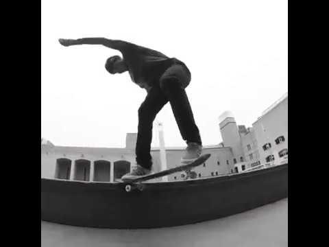 Video FKD PRO Gold Gustavo Felipe Bearing [x8]