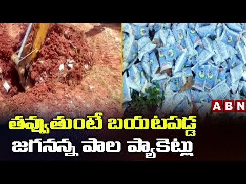 Expired Jagananna milk packets buried in Anantapur district, unearthed using JCB