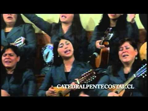 Rayo Fugaz - Coro Catedral