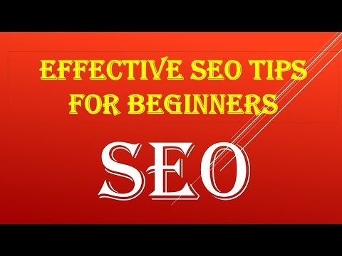 Effective SEO Tips for Beginners That Will Get Your Site Rank in 2021/SEO Tips and Tricks/#seotips