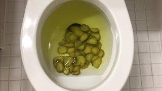 Will it Flush? - Pickles