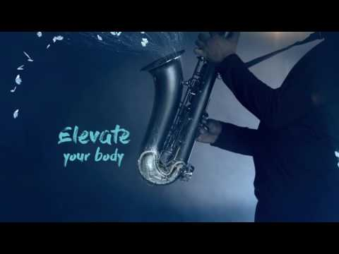 Elevate your mind body and soul at Standard Bank Joy of Jazz 2016