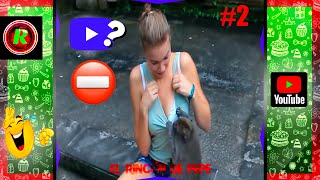 TRYING NOT TO LAUGH IMPOSSIBLE 😍🙊🤣 |IF YOU LAUGH YOU RESET THE VIDEO #2 🍓🍫🍹 |