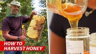How a Family Business Became One of America's Best Natural Honey Vendors — Vendors