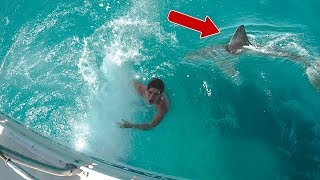 SHARK PRANK WENT REAL!!