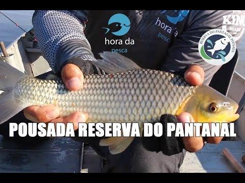 Pescaria de Piau no Pantanal - Programa Hora da Pesca