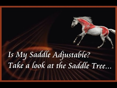 Is My Saddle Adjustable? Take a look at the Saddle Tree - by Jochen Schleese