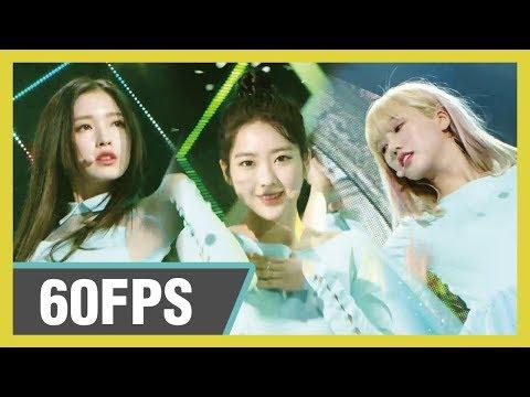 60FPS 1080P | OH MY GIRL - The fifth season (SSWFL), 오마이걸 - 다섯 번째 계절 Show! Music Core 20190518