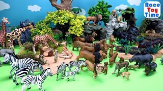 Toy Wild Safari Animals - Learn Zoo Animals Names For Kids