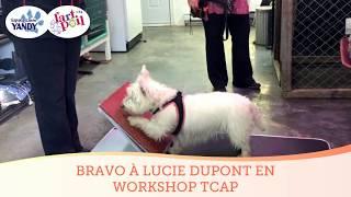 Workshop pratique Intervenant TCAP Module 2
