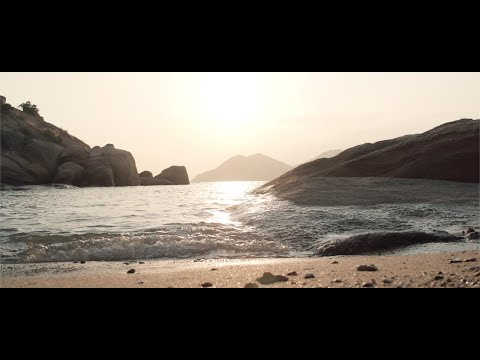 Shi Fu Miz Autumn 2019 — Video Report