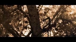 Fire Asho Na|Imran|Top Bengali Song