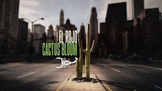 el-rojo-cactus-bloom-official-music-video.jpg