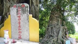 Chuyện lạ đời - Ly kỳ chuyện Lão Hòa Thượng hiển linh cứu người ở Hà Tiên