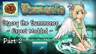 Terraria 1.3.3 Expert Modded Summoner Part 2 | Stacey vs King Slime!