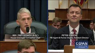 Complete exchange between Rep. Trey Gowdy and FBI Deputy Assistant Director Peter Strzok