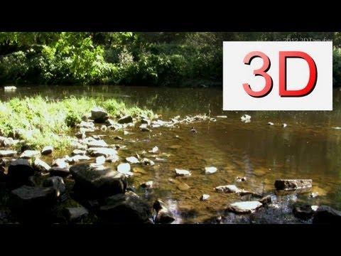 3D Video: Mama Duck and Ducklings