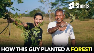 He Planted An Entire Forest By Himself