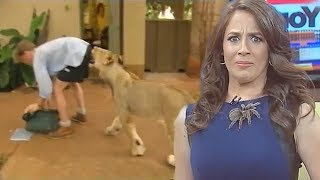 Best Animal News Bloopers Compilation 2018