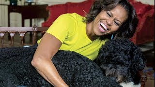 Michelle Obama's White House photographer shares the stories behind iconic photos