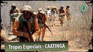 Tropas Especiais do Exército Brasileiro - Caatinga