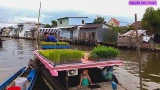 Du lịch khám phá huyện Vĩnh Thuận || Vinh Thuan District Discovery || Vietnam Discovery Travel