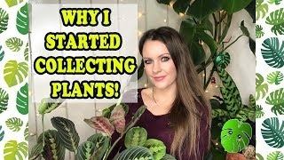 What started my Plant Obsession l Why I started collecting plants