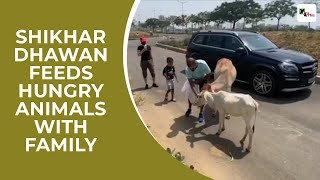 Heartwarming Video: Shikhar Dhawan feeds hungry animals wi..