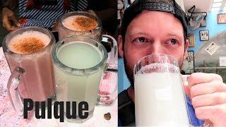 Gringo Drinks Pulque (Mexico's Ancient Alcoholic Beverage)