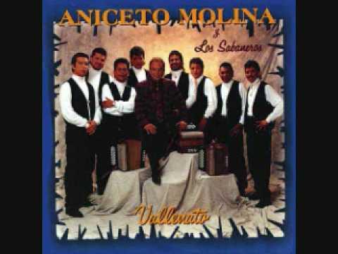Aniceto Molina-El campanero