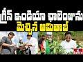 గ్రీన్ ఇండియా ఛాలెంజును మెచ్చిన అమితాబ్ | Jordar News | hmtv