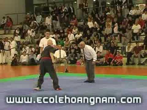 Kung-Fu 16e Trophée Hoang Nam - May 2008 Antibes - France