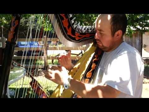 Rodrigo Olate - introduccion tonada