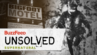 The Harrowing Hunt For Bigfoot