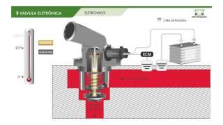 WIE ES FUNKTIONIERT – Electrovalve Ford Line VT525