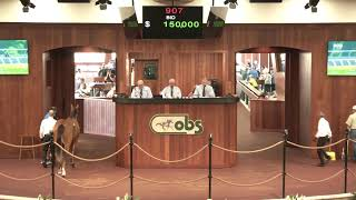 OBS April 2019 Two-Year Olds in Training Sale, Day 3