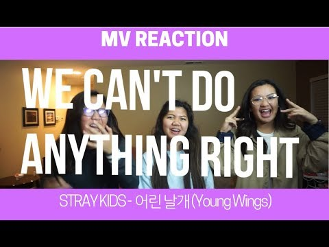 MV REACTION | Stray Kids - 어린 날개 (Young Wings)