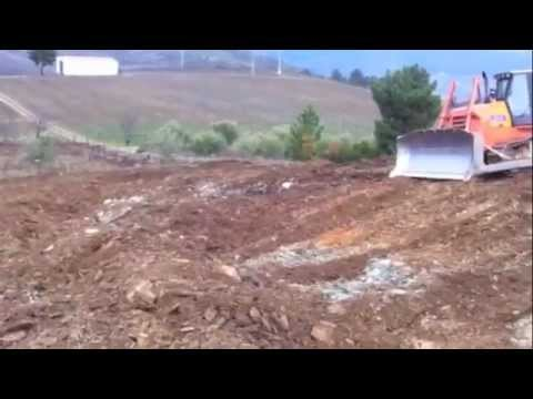How to prepare the soil to plant grape vines