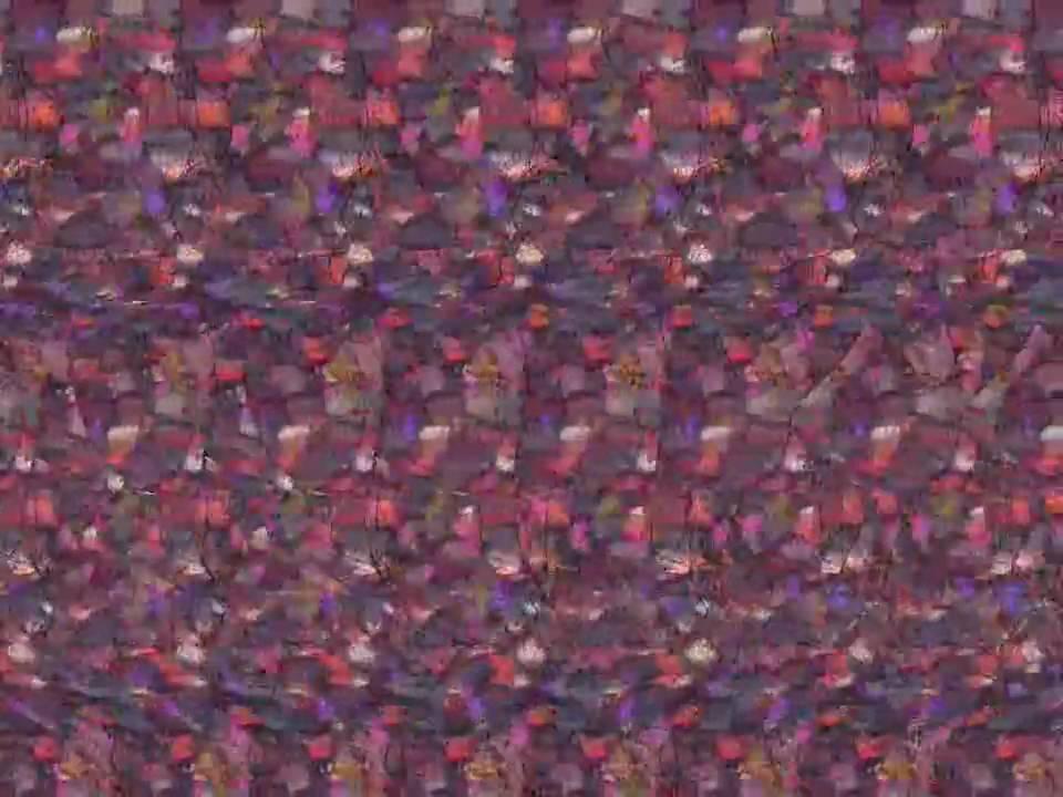 Animated Stereogram