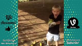 Try Not to Laugh Funny Kids and Animal Fails Compilation 2018