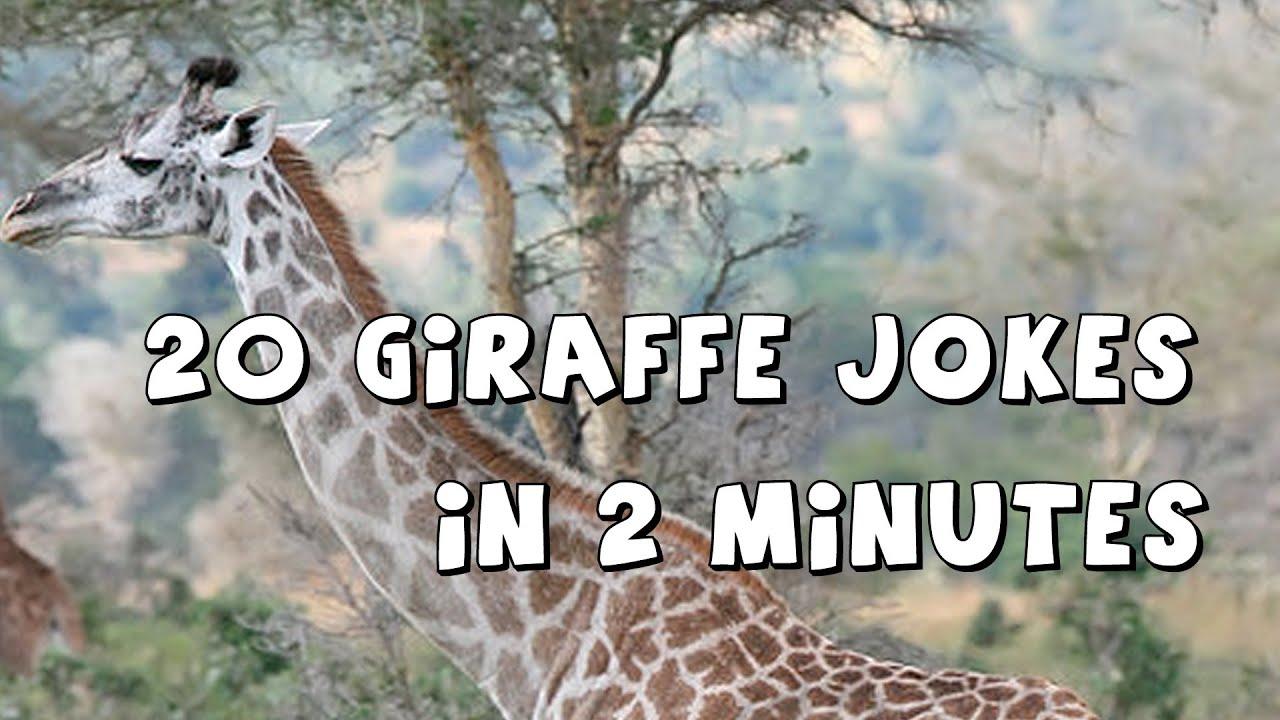 funny giraffe jokes - photo #6