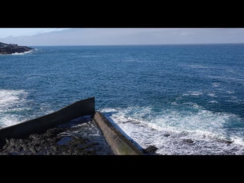 Live Oregon State Parks and the Whale Watching