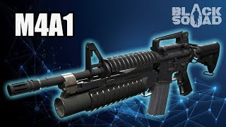 Assault Rifle: M4A1