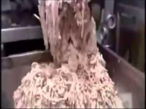 Como se hacen los hotdogs y salchichas? pues aqui lo tienen..