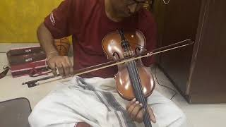 Chella kiligalaam palliyiley - Violin