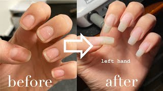 How to Grow your Nails Long and Strong (follow my growth)