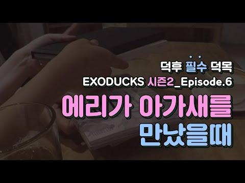 [엑소덕스·시즌2] EP6. 에리가 아가새를 만났을 때 an EXO fan meets a GOT7 fan